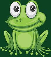 FOG BMP Frog